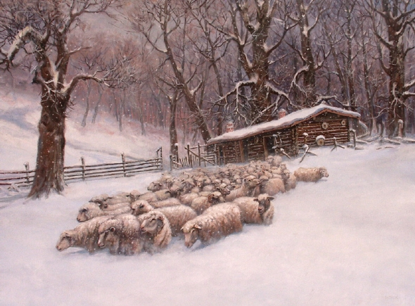 Jerry Antolik sheep